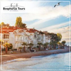 bosphorus-tour-istanbul-daily-princess-island-tour-1-300x300
